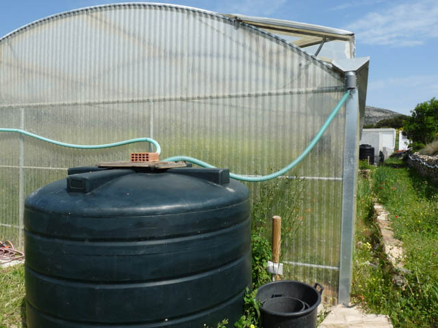 We collect rainwater