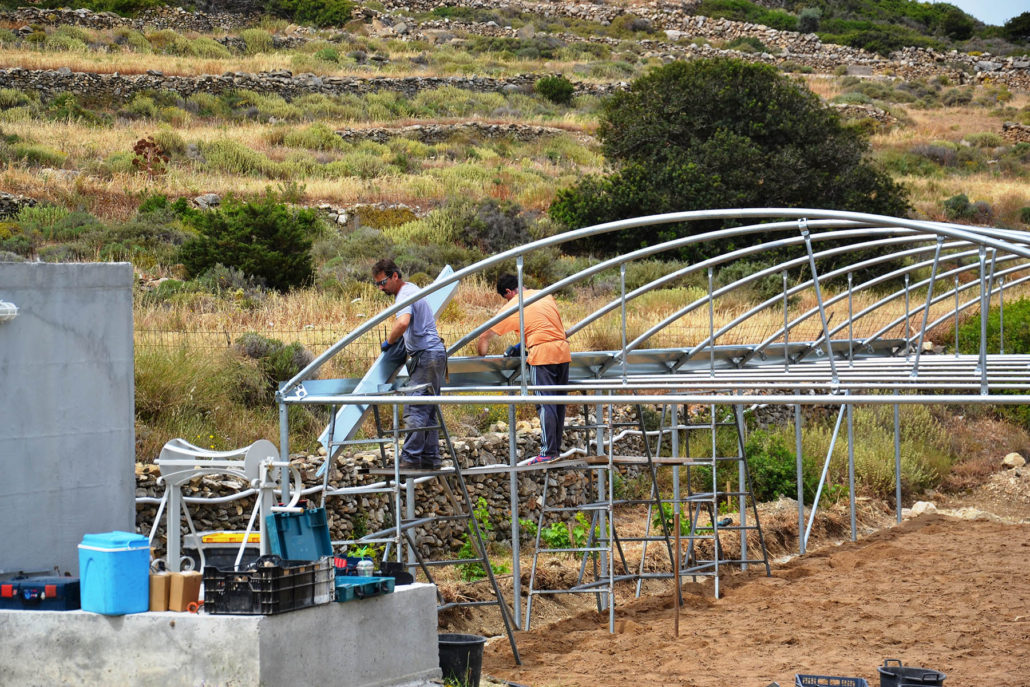 Building the greenhouse