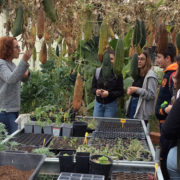 Επίσκεψη του λυκείου της Παροικιάς στο αγρόκτημα